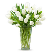 20 White Tulips: Gifts to Umm Al Quwain
