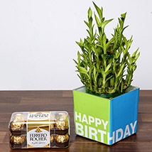 3 Layer Bamboo Plant and Chocolates For Birthday: Send Chocolates in Abu Dhabi