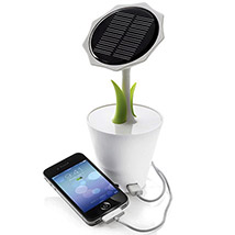 Rechargeable Solar Sunflower: Travel Accessories