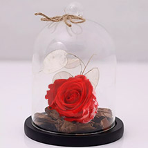 Red Forever Rose In Glass Dome: Roses Bouquet