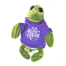 Cute Turtle In Birthday Hoodie: