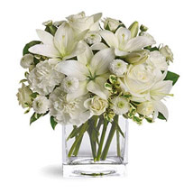 White Beauty: Sympathy & Funeral Flowers