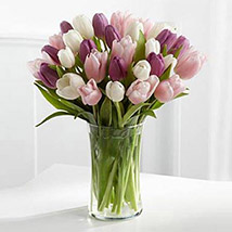 Painted Skies Tulip Bouquet SA: Saudi Arabia Gift Delivery